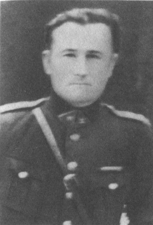 Juozas Baltrušaitis tigras