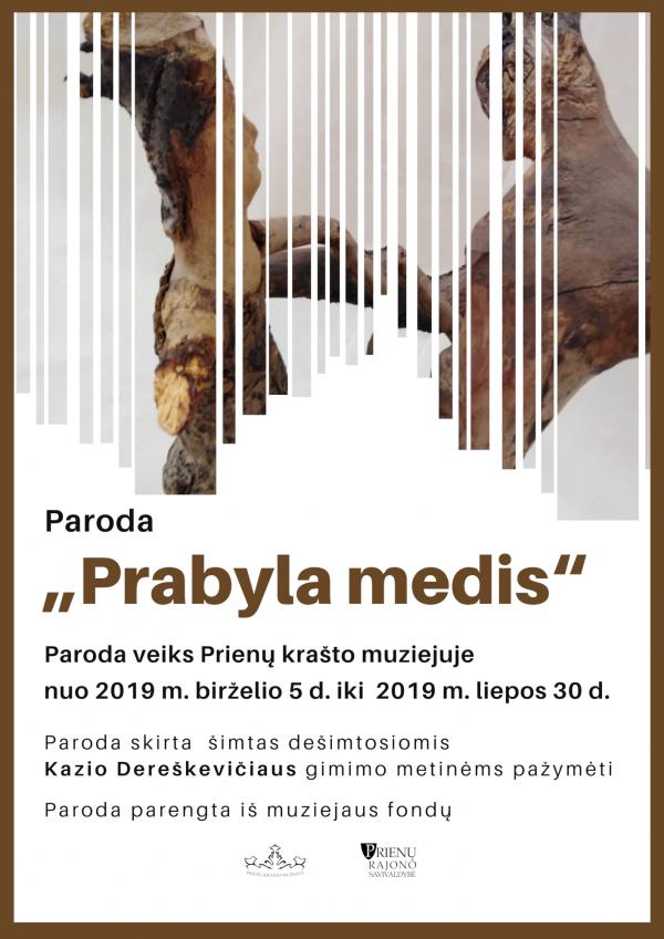 web_Parodos plakatas Prabyla medis